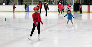 Image result for kids figure skating