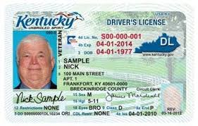 Driver Licence Print Id Driver Id Print Licence Driver