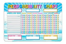Amazon Com Responsibility Reward Behavior Star Chart