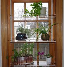 indoor window garden. indoor window garden n