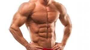 Resultado de imagem para muscle
