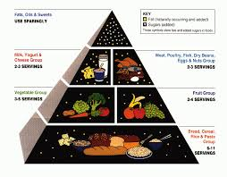 Food Pie Chart Usda Why Cant The Usda Get The Food Guide Right A Lesson In