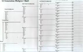 printable family tree charts ancestry charts ohye mcpgroup co