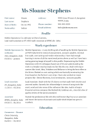 Resume Examples By Real People Project Manager Resume Template