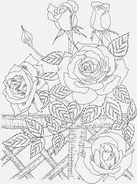 Adult Coloring Pages Free To Print Nature Beauty Coloring Pages