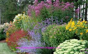 Small Picture Planning a Flower Garden Gardening Flower and Vegetables