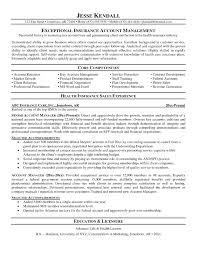 Ideas Collection Sales Account Manager Job Description Account