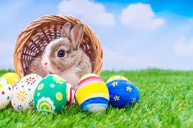 Възкресение: С червено яйце и Великденски заек - BG VOICE