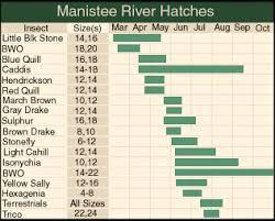 Manistee Hatch Chart Fly Fishing Michigan Salmon Flies