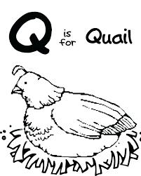q coloring page letter q coloring page letter coloring pages q coloring pages letter q coloring