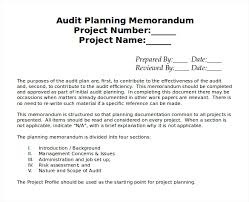 Efficient Audit Planing Memorandum Template With Blank Project ...