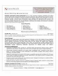 Clinical Project Manager Sample Resume Magnificent Example Resume Project Manager Project Manager Resume Sample Free