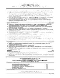Magnificent Finance Executive Resume Summary Contemporary
