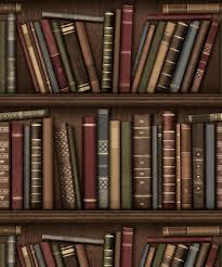 Fine Decor Bookcase Wallpaper