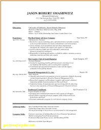 Small Business Owner Resume Fresh 46 Fresh Free Resume Templates For