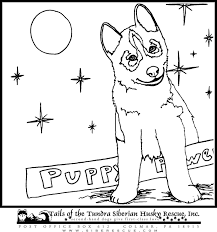 Small Picture The Fun Zone Coloring Book Husky Coloring Book color sheets