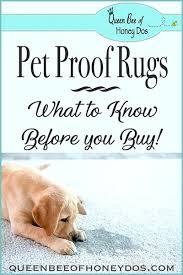 pet proof area rugs pin it pet proof area rug pad