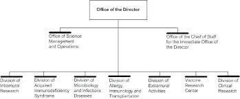 Organizational Chart Online Template Org Free Templates