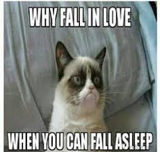 Funny Things I Enjoy on Pinterest   Grumpy Cat, Meme and Cat via Relatably.com