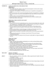 Video Resume Sample Producer Video Resume Samples Velvet Jobs 6