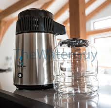 230 volt euro plug water distiller in stainless steel and black with glass carafe counter top model by megahome mh943sbs sw gb pi