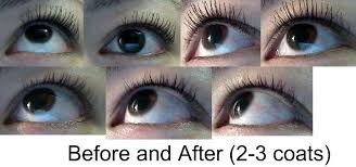 cover lash blast length