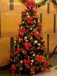 Christmas Tree Origin  FishwolfeboroNew Christmas Tree