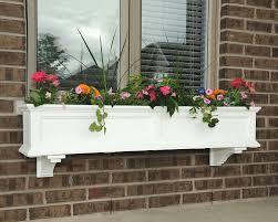 Amazon.com : Mayne Fairfield 5824W Window Box Planter, 5-Foot, White :  Plant Window Boxes : Garden & Outdoor