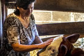 fondation grameen crédit agricole