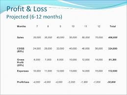 Profit Loss Projection Magdalene Project Org