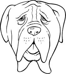 Hond Hoofd Kleurplaat Schattige Dieren