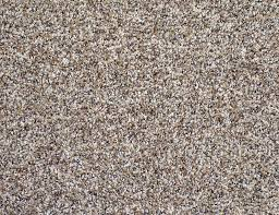 lowes carpet specials. Frieze Carpet Fearsome Black And Tan Ideas Prices Nylon Pronunciation Lowes Mohawk Warranty Color Twist Ft . Carpeting Runner Reviews Specials D
