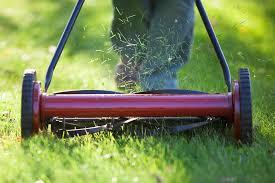 power reel lawn mower. reel lawn mower power