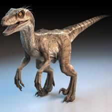 Hd to 4k quality, no. Raptor Dinosaur 3d Model Raptor Dinosaur Dinosaur Images Dinosaur Pictures