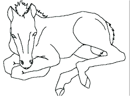 Horse Color Page Baby Horses Coloring Pages Printable Horse Coloring