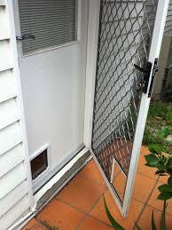 cat door in camberwell by ometek glass