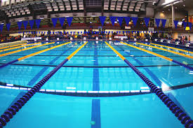 olympic swimming pool lanes. Olympic Swimming Pool Lanes U