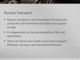 3 Types Of Passive Transport Types Of Movement Across The Cell Membrane