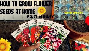 how to grow flower seeds fast with