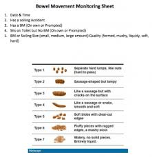 Charting Bowel Sounds Gi Charting Made Our Lives Way Simpler Complex Child