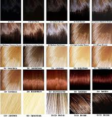 Sample Hair Colors Chart Different Density Levels Of Color That You Can Choose For