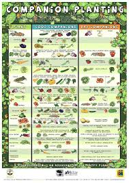 Vegetable Companion Planting Charts Companion Planting Reference Guide Garden Tower Project