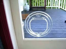pet glass door how to install a dog door in a glass door how to install pet glass door