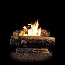 oakwood 24 in vent free propane gas fireplace logs