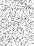 Корзины с ягодами раскраска