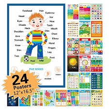 24 pack educational posters for