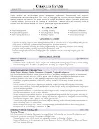 Resume Writings Unique Training On Cv International Facilitator Job