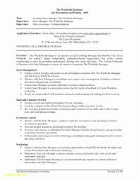 Retail Sales Manager Resume Lovely 25 Retail Manager Job Description