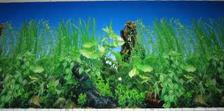 Backgrounds For Fish Tanks Printable Free Zoro Braggs Co