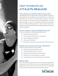 Athletic Resume Template Free athlete resumes Tolgjcmanagementco 53